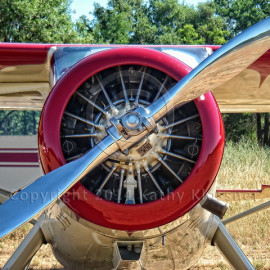 Aviation & Woodies
