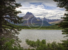 Swiftcurrent Lake Many Glaciers Montana