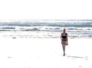 California Santa Ana Wind Day